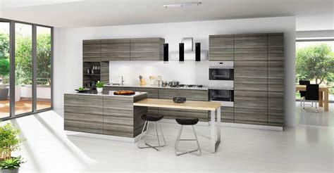 modern style kitchen cabinets trellischicago modern kitchen cabinets with cool impression trellischicago