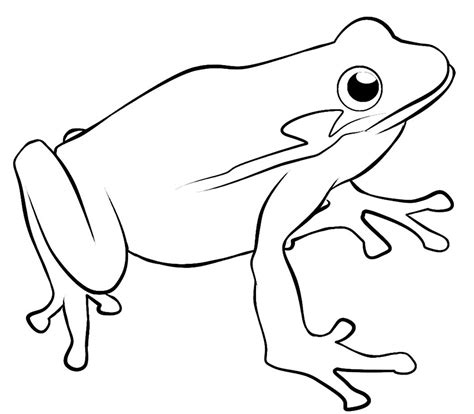 frog template for kids clipart best