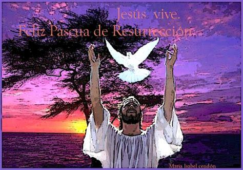 imagenes de jesus esta vivo imagen jes 250 s est 225 vivo grupos emagister com