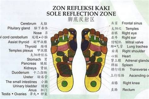 Reflexology Detox Foot Bath by 1000 Images About Detox On Foot Pads Detox