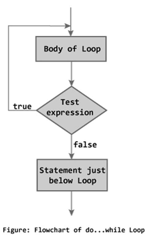 flowchart for do while loop c while and do while loop with exles