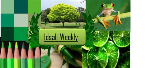 what mood is green molly s media blog mood board