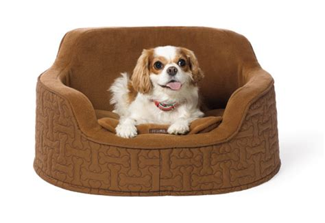 martha stewart dog beds martha stewart pets dog milk