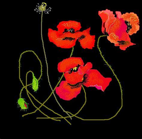 linguaggio fiori fiori il linguaggio dei fiori