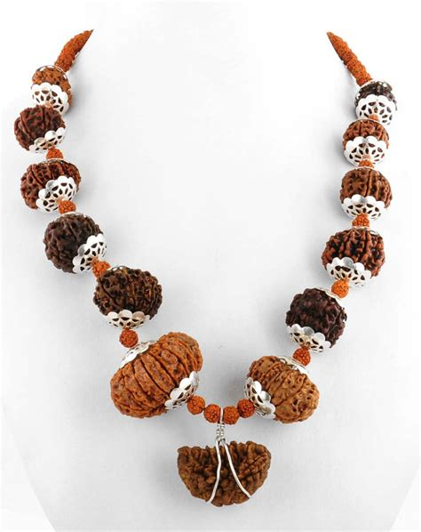 mala for sale mala with 1 and 14 faced rudraksha for sale in guwahati
