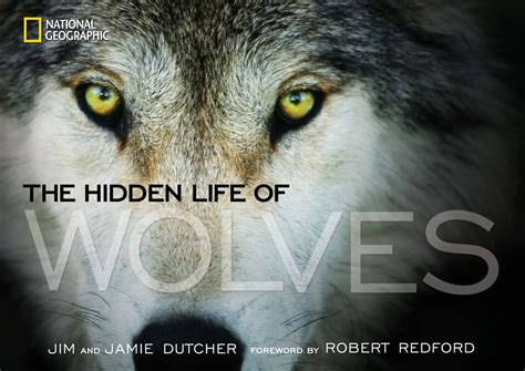 wolves picture book everywhere books are sold living with wolves