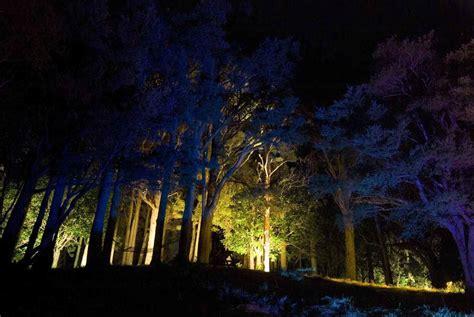 Landscape Lighting Nz Landscape And Garden Lighting Lighting Solutions