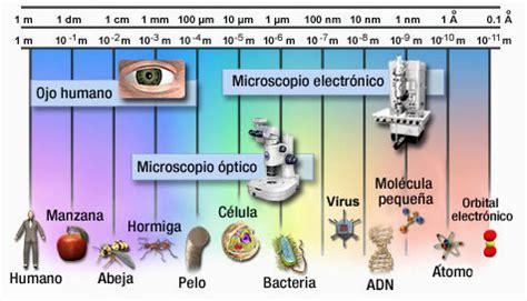 linea del tiempo del microscopio biologia 1 trabajos cd 17 colecci 243 n educ ar