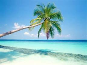 Tropical island wallpapers hd wallpapers