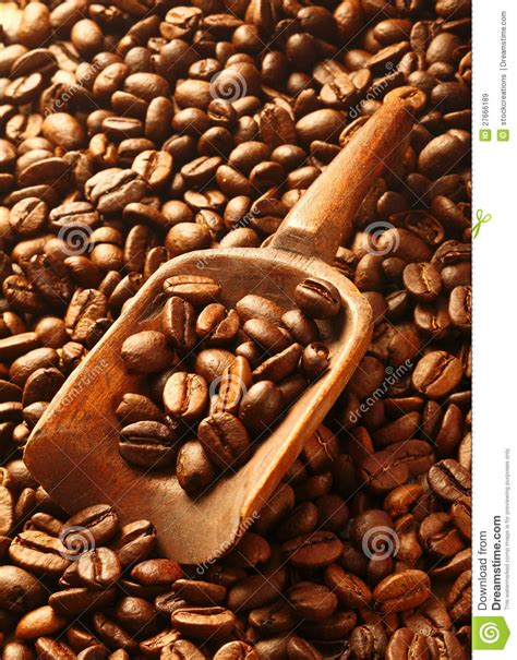 Rich Brown Fresh Roasted Coffee Beans Stock Image   Image: 27666189