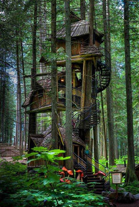 best treehouses best 20 fantasy treehouses around the globe home decor