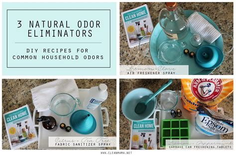 diy shoe odor eliminator cleaner recipes the idea room