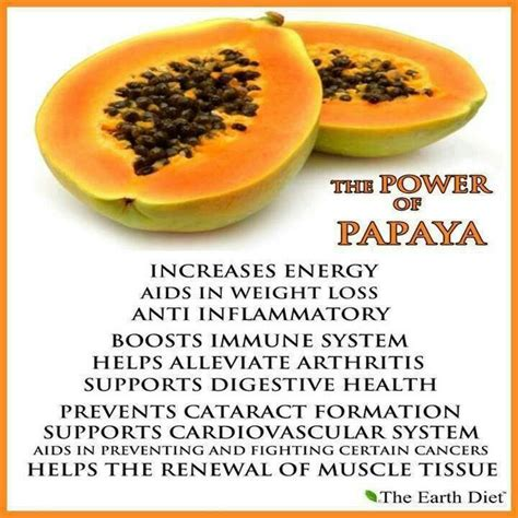 Papaya For Health And by The Health Benefits Of Papaya