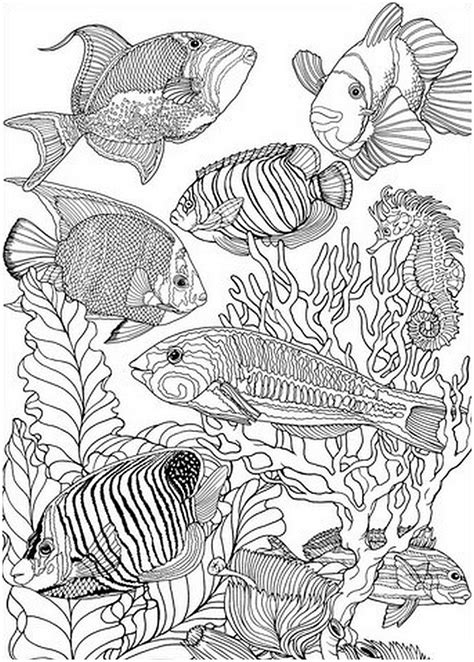 coloring pages of fish for adults kleuren voor volwassenen vissen 9