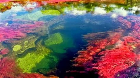 river colors ca 241 o cristales 5 color river amazing river ca 241 o