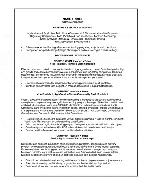 Resume Format For Bank Loan Banking Lending Executive Resume