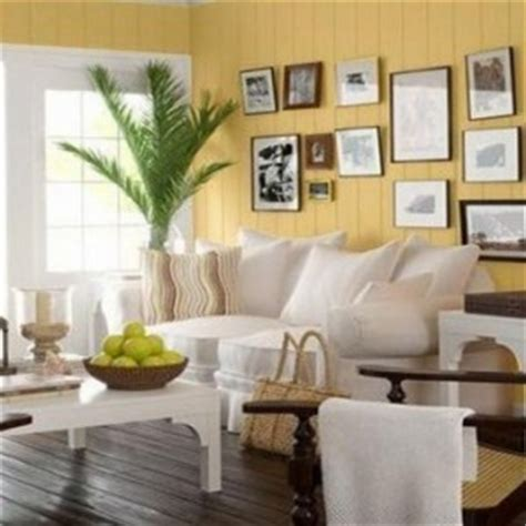 20 timeless paint colors for your living room zergnet