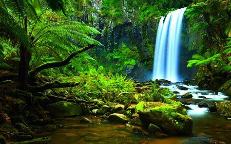 waterfall jungle green tropical vegetation rocks trees
