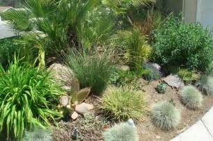 gardening landscaping grasses for landscaping interior decoration and home design blog