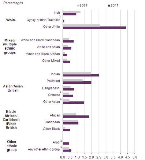 ethnic minorities in uk ethnicity and religion statistics institute of race
