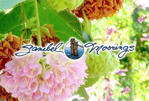 sanibel island botanical garden 47 best images about sanibel on