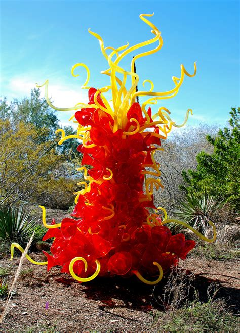 Desert Botanical Garden Images Images The Desert Botanical Garden