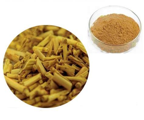 tanaman alang alang sebagai obat tradisional bibitbungacom