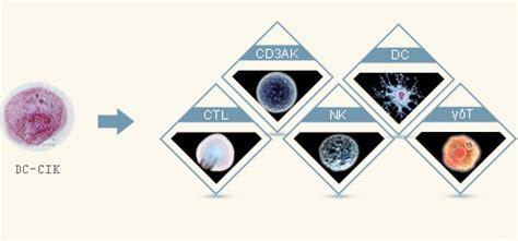 Dc Kombinasi immune cell therapy rumah sakit tumor modern guangzhou