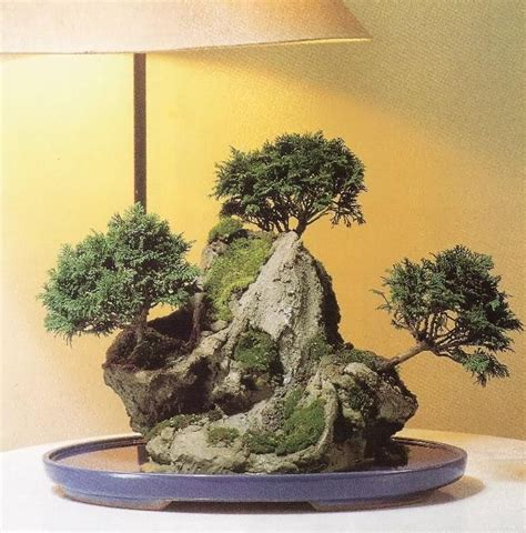 134618 Como Hacer Arboles Miniaturas El Bonsai Artificial Ebook by Foro De Infojard 237 N Roca Artificial Hazlo Tu Mismo