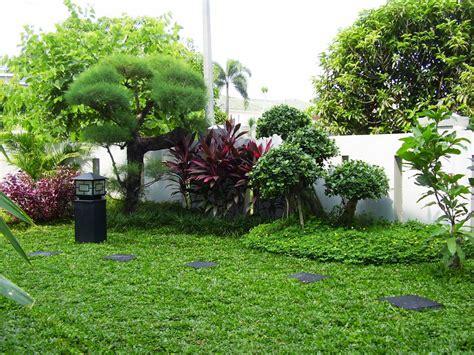 galeri taman desain  pembuatan taman