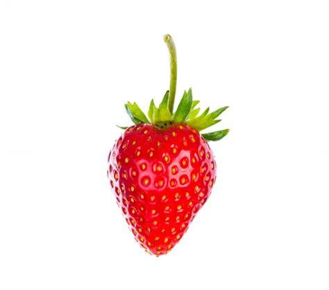 fotos sin fondo blanco fresa aislada en el fondo blanco descargar fotos gratis
