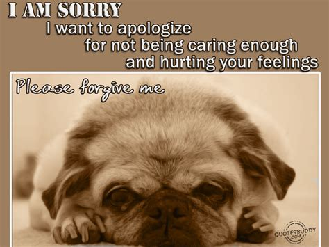 sorry quotes sorry quotes graphics