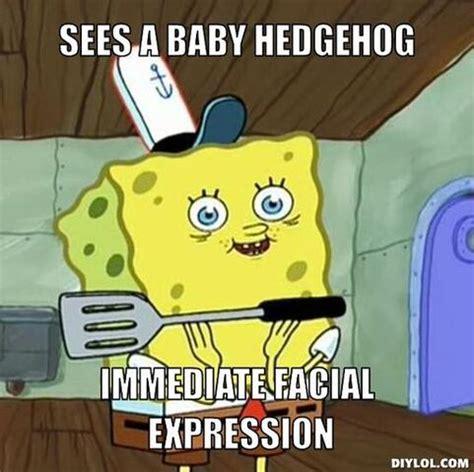image spongebob face meme generator sees  baby hedgehog