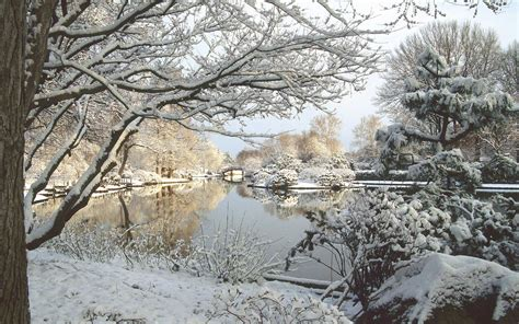 the garden in winter 8 places that celebrate exquisite festivals in winter