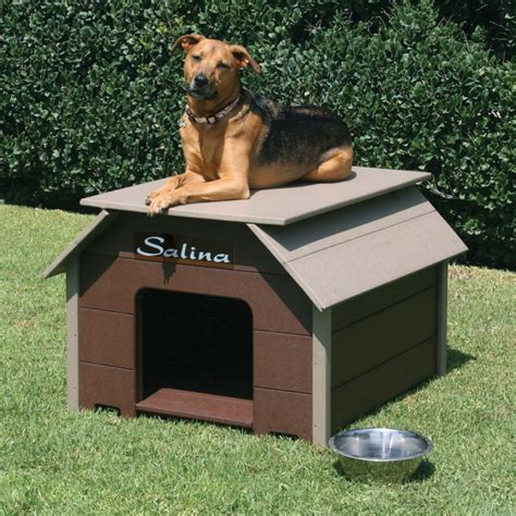 stay out of the dog house 34 doggone good backyard dog house ideas