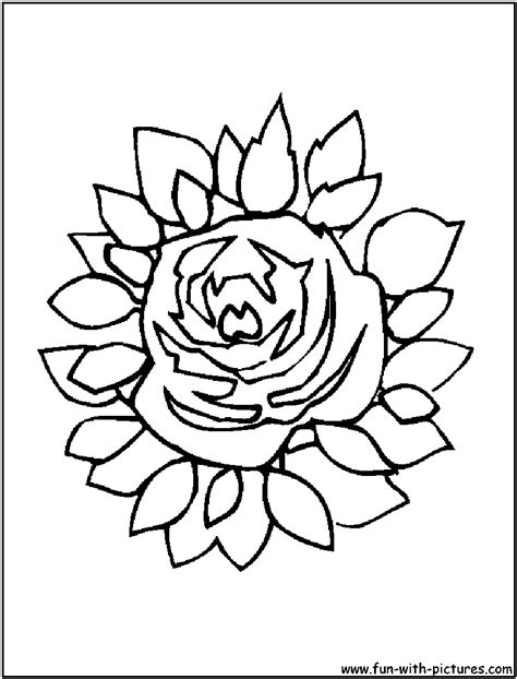 large flower coloring page pretty flower coloring pages page
