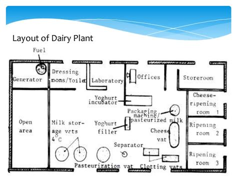Layout Of Dairy Plant Ppt | dairy industry