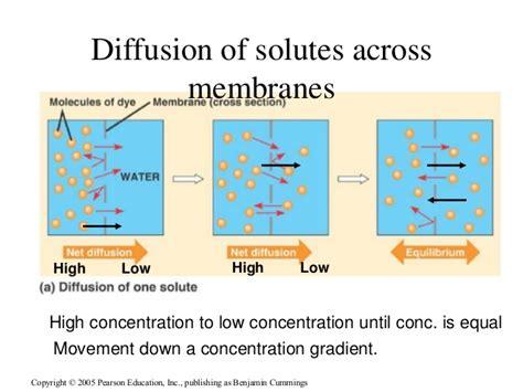 membrane structure  transport  medical school