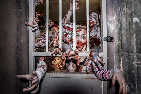 Unique Photo Gifts zombie outbreak experience