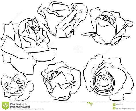 imagenes de flores ilustradas silueta de rosas ilustradas fotos de archivo imagen