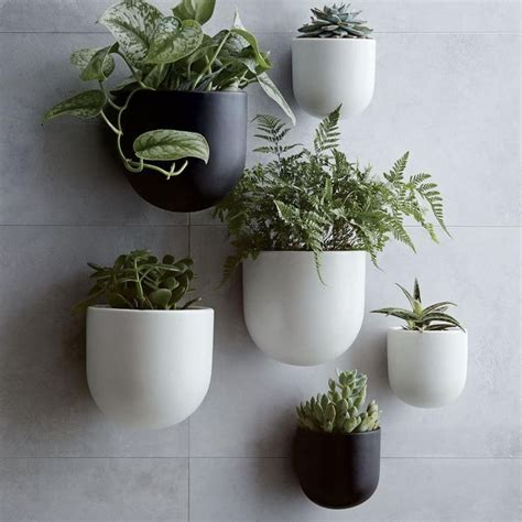 plant wall hangers indoor terrarium design amusing wall mounted pots for plants
