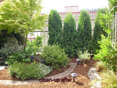 go green landscaping photo gallery