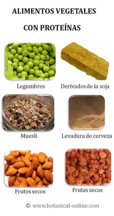 alimentos con proteinad lista de alimentos que contienen protenas