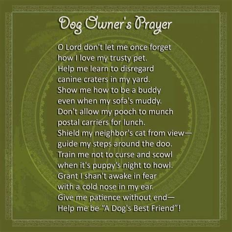 dogs prayer owners prayer for the of dogs