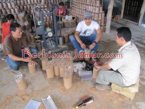 Cincin Jamur pemasangan cincin dan pelubangan berbisnis jamur