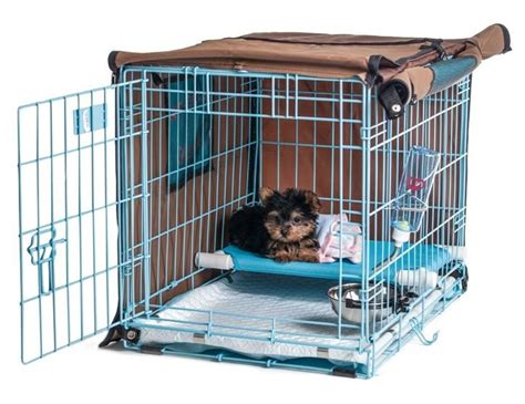crate training pup pee poo palace revolutionary puppy potty training
