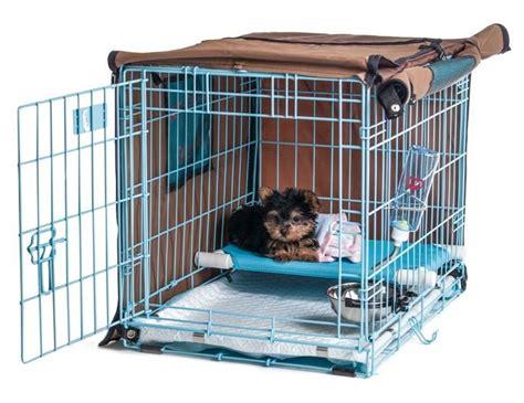 crate training pup pee poo palace revolutionary puppy potty training