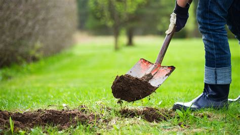 digging in backyard starting spring yard work to stay safe call before you dig