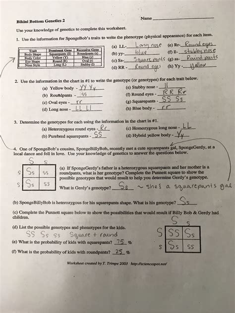 Bottom Genetics Worksheet by Bottom Genetics Page Two Sulli S Science Site