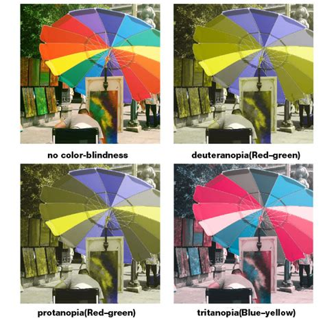 complete color blindness neuroscience can color blindness be treated with image